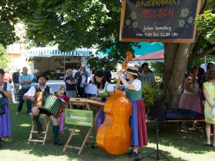 15. August 2019  /  2. Kräuterfest der ÖVP Frauenbewegung im Park